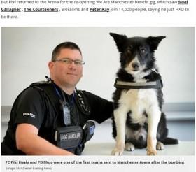 テロ事件の捜査に関わった警察犬 悲惨な現場を目にして脱毛症に(英)