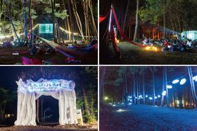 【注目の映画野外フェス!】魅力満点の「夜空と交差する森の映画祭」