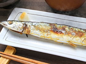 日本の食卓から「庶民の魚」が消える日