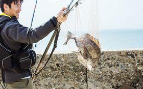 大都会東京で釣り体験?釣り好き筆者のオススメ釣り場5選♪