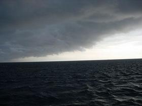 「体長100メートル超え」新種発見か!?深海にひそむ超巨大生物に緊急警報発令![AD]