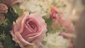 1年の感謝を花束に♡いつもお世話になってる人にプレゼントしてみない?