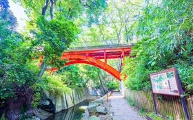 東京にもあった!自然たっぷり「等々力渓谷」でリラックスしよ♪